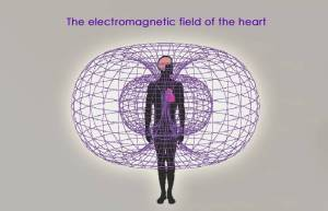 The heart's electromagnetic field--by far the most powerful rhythmic field produced by the human body--not only envelops every cell of the body but also extends out in all directions into the space around us. The cardiac field can be measured several feet away from the body by sensitive devices. Research conducted at IHM suggests that the heart's field is an important carrier of information.